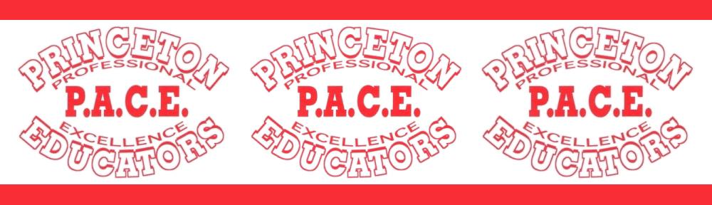 Princeton ACE